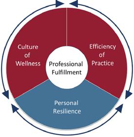 Creating the Organizational Foundation for Joy in Medicine