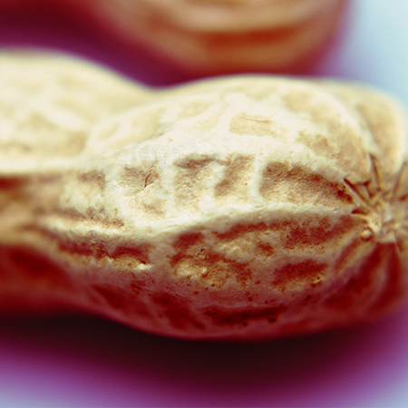 <title>Peanut Allergy: The Recommendations Have Changed</title>